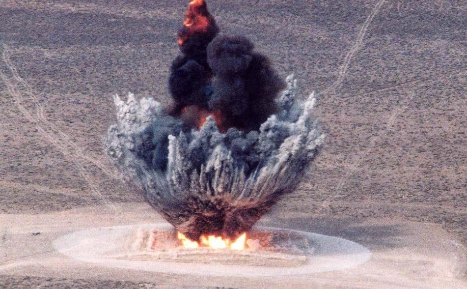 NTS - BEEF - WATUSI Test shot